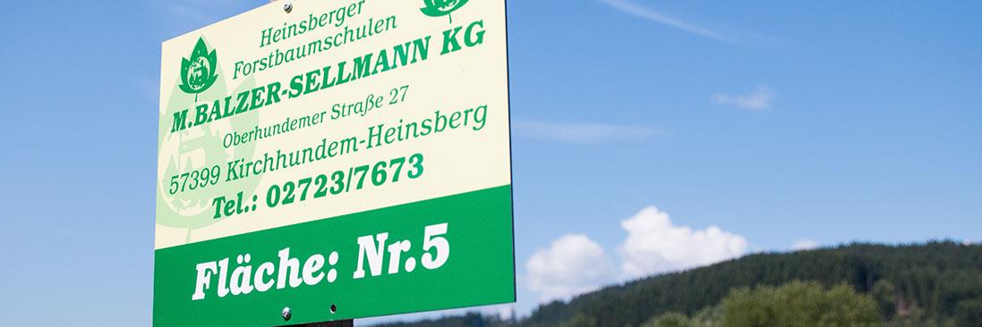Balzer-Sellmann - Forstbaumschule Kirchhundem