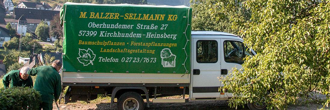Balzer-Sellmann - Forstbaumschule im Sauerland